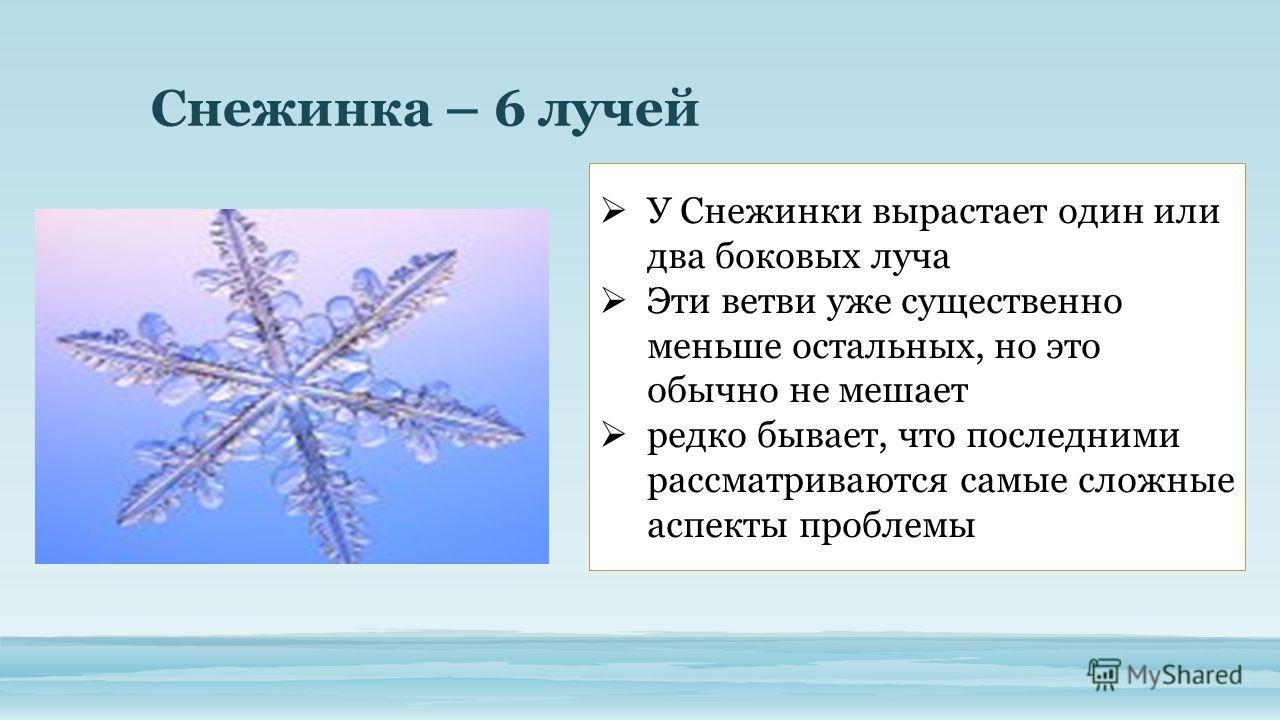 Снежинка – 6 лучей У Снежинки вырастает один или два боковых луча Эти ветви уже существенно меньше остальных, но это обычно не мешает редко бывает, что последними рассматриваются самые сложные аспекты проблемы