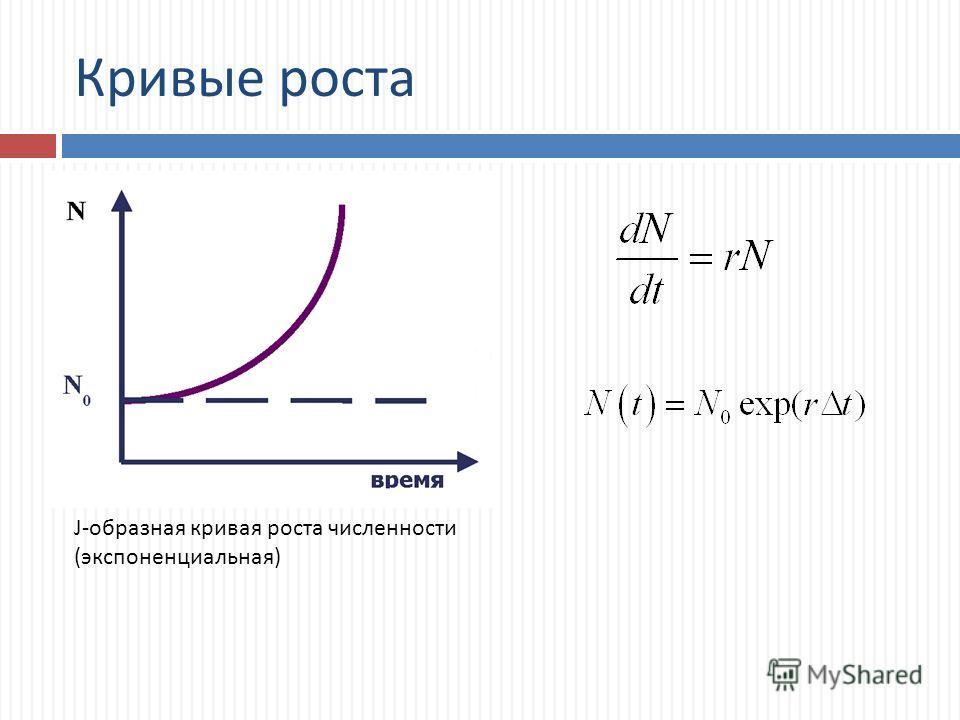 Кривые роста J-образная кривая роста численности (экспоненциальная)