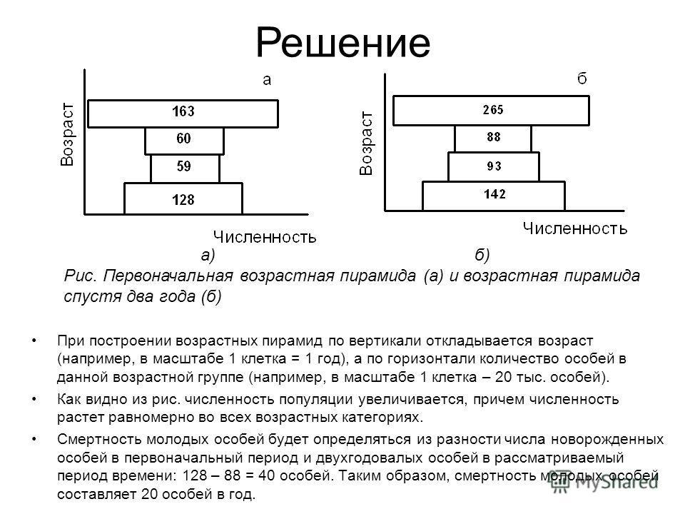 При построении возрастных пирамид по вертикали откладывается возраст (например, в масштабе 1 клетка = 1 год), а по горизонтали количество особей в данной возрастной группе (например, в масштабе 1 клетка – 20 тыс. особей). Как видно из рис. численност
