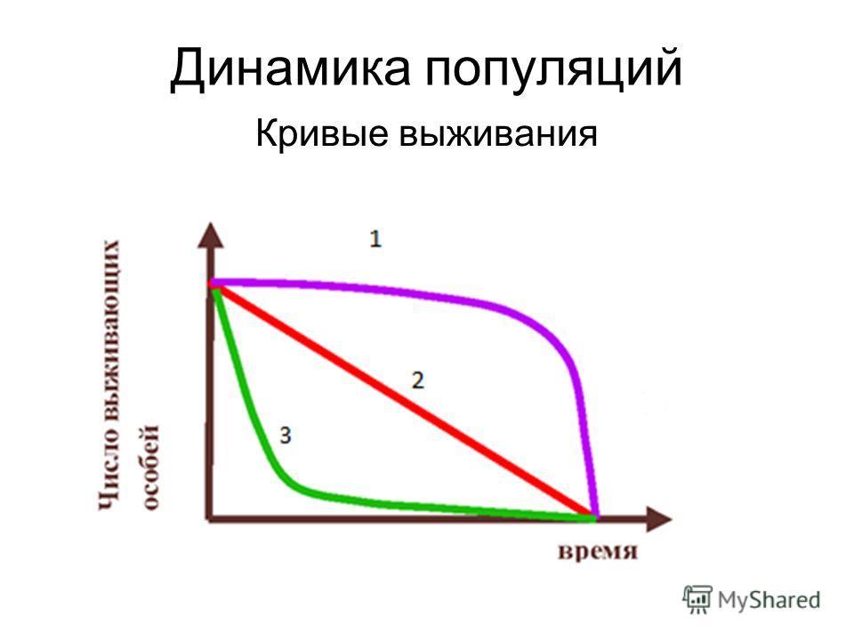 Динамика популяций Кривые выживания
