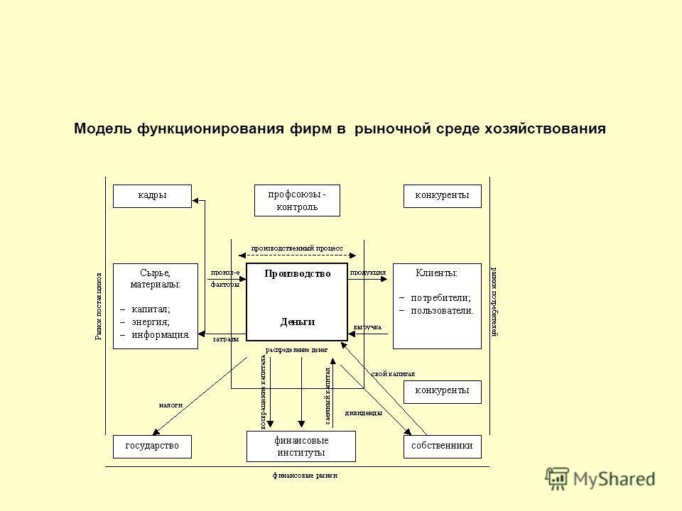 Модель функционирования фирм в рыночной среде хозяйствования