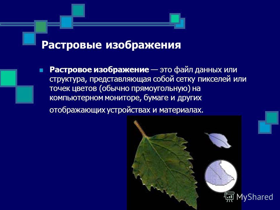 Растровые изображения Растровое изображение это файл данных или структура, представляющая собой сетку пикселей или точек цветов (обычно прямоугольную) на компьютерном мониторе, бумаге и других отображающих устройствах и материалах.