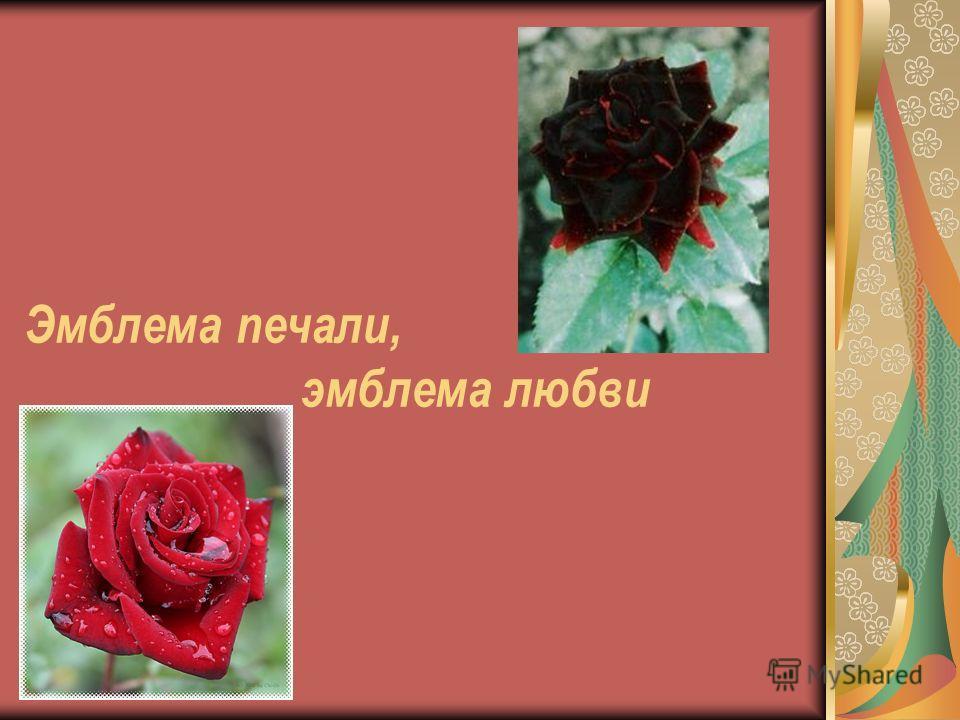 Эмблема печали, эмблема любви