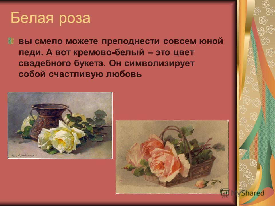 Белая роза вы смело можете преподнести совсем юной леди. А вот кремово-белый – это цвет свадебного букета. Он символизирует собой счастливую любовь