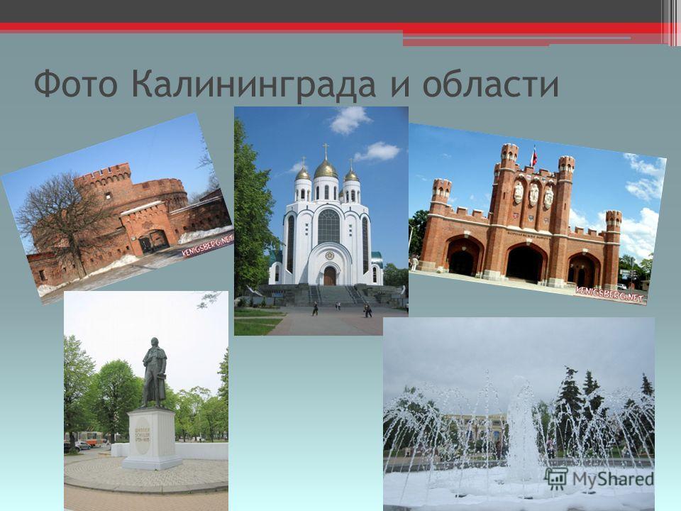 Фото Калининграда и области