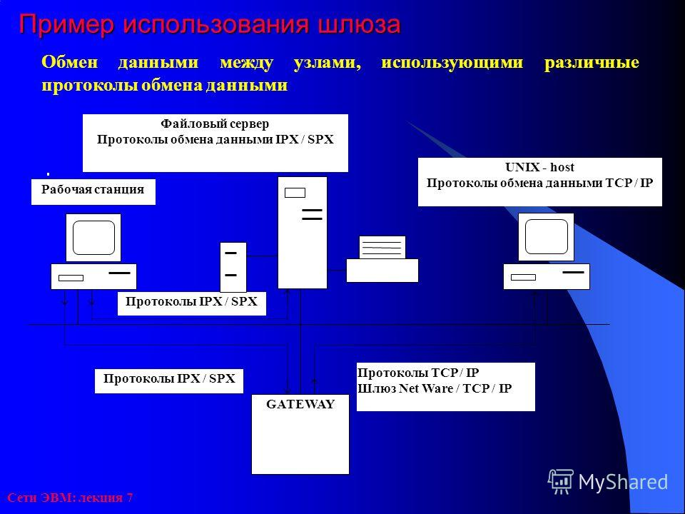 Сети ЭВМ: лекция 7 Пример использования шлюза Обмен данными между узлами, использующими различные протоколы обмена данными Протоколы IPX / SPX Файловый сервер Протоколы обмена данными IPX / SPX Протоколы TCP / IP Шлюз Net Ware / TCP / IP UNIX - host