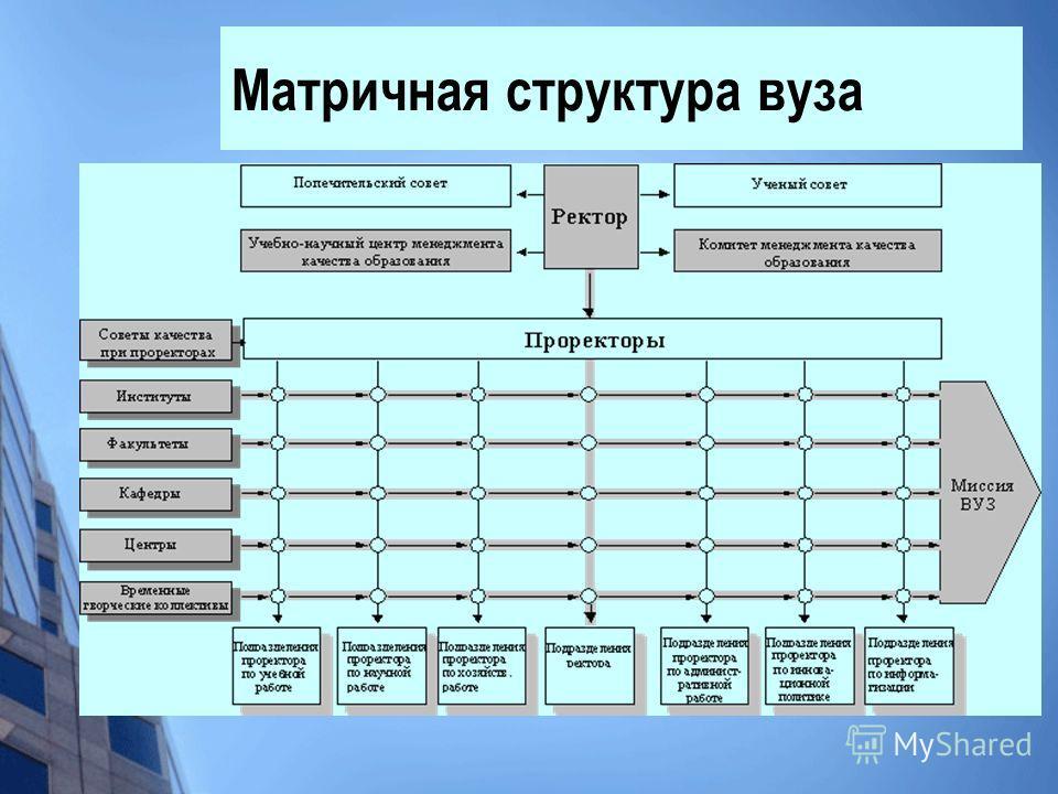 Матричная структура вуза