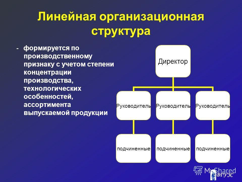 Линейная организационная структура - формируется по производственному признаку с учетом степени концентрации производства, технологических особенностей, ассортимента выпускаемой продукции Директор Руководитель подчиненные Руководитель подчиненные Рук