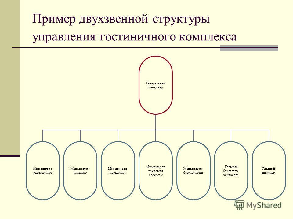 Пример двухзвенной структуры управления гостиничного комплекса Генеральный менеджер Менеджер по размещению Менеджер по питанию Менеджер по маркетингу Менеджер по трудовым ресурсам Менеджер по безопасности Главный бухгалтер- контролер Главный инженер