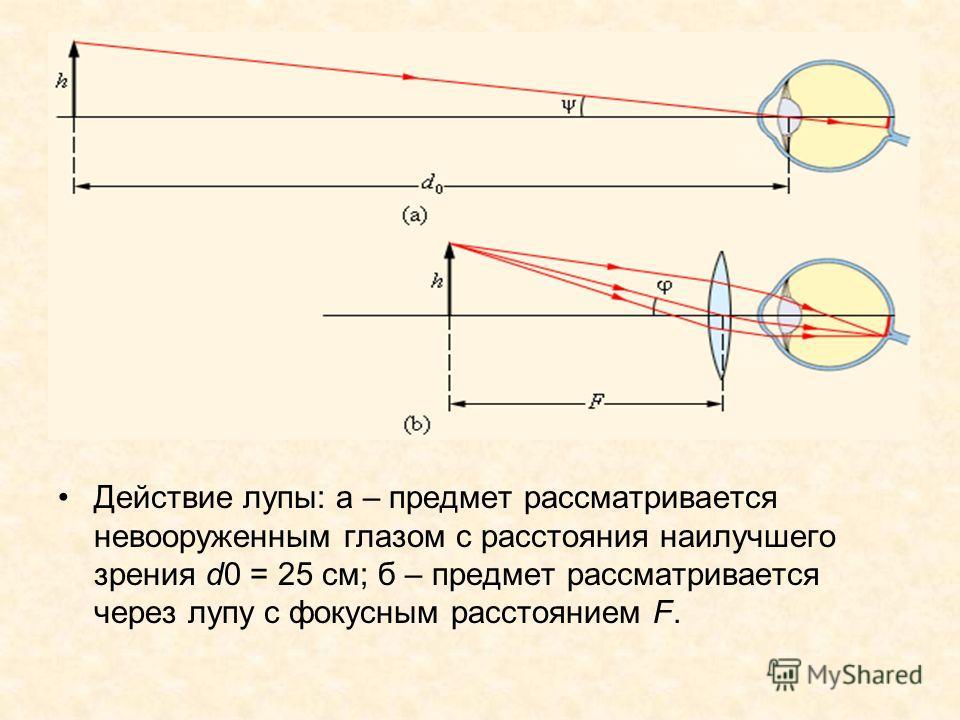 Действие лупы: а – предмет рассматривается невооруженным глазом с расстояния наилучшего зрения d0 = 25 см; б – предмет рассматривается через лупу с фокусным расстоянием F.
