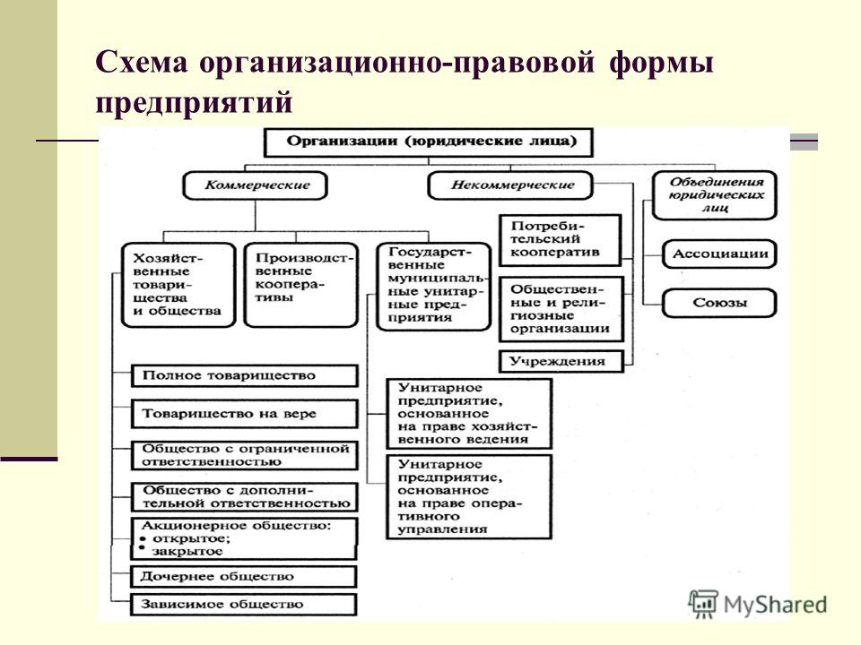 Схема организационно-правовой формы предприятий