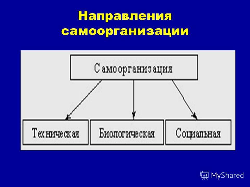 Направления самоорганизации
