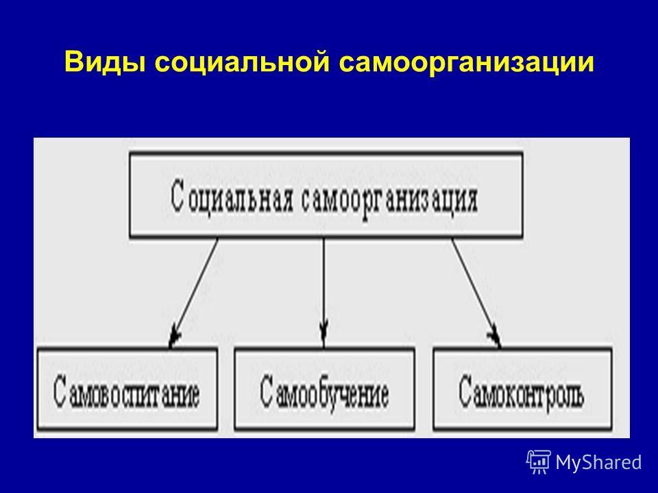 Виды социальной самоорганизации