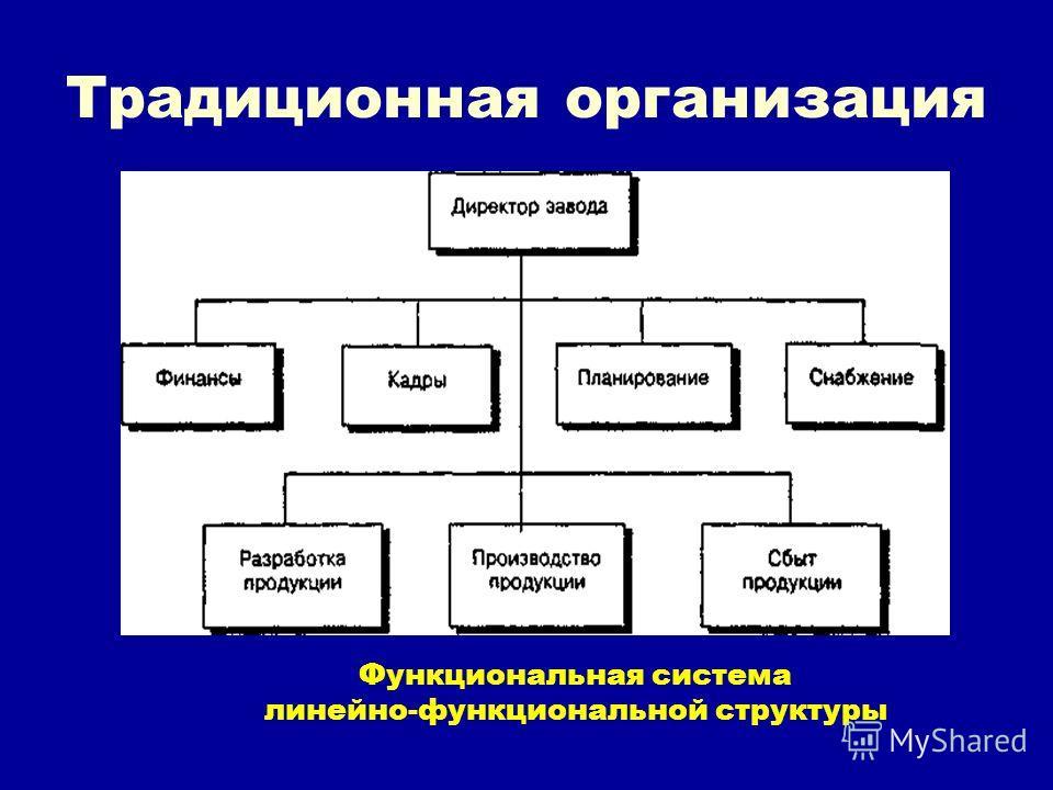 Традиционная организация Функциональная система линейно-функциональной структуры