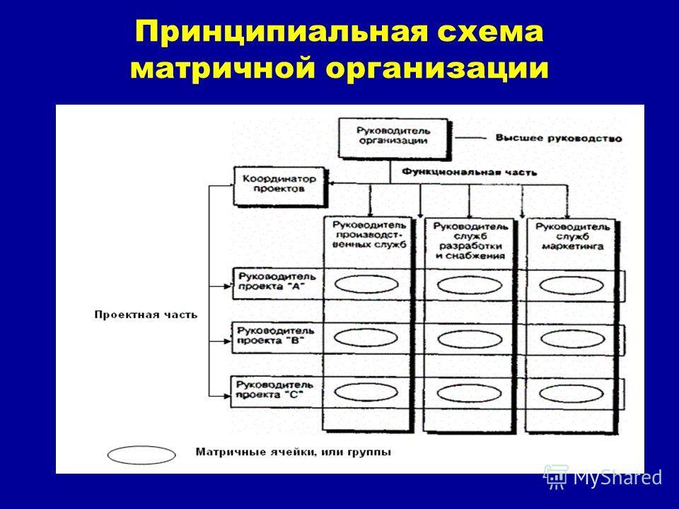 Принципиальная схема матричной организации