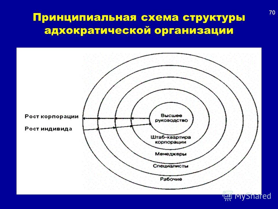 Принципиальная схема структуры адхократической организации 70
