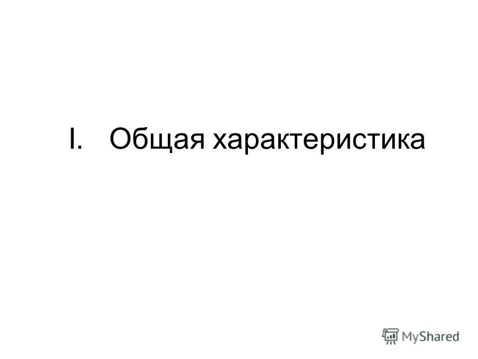 I. Общая характеристика