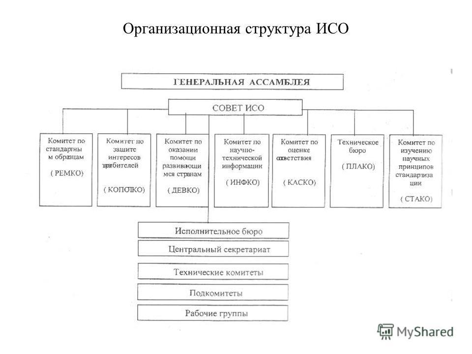 Организационная структура ИСО