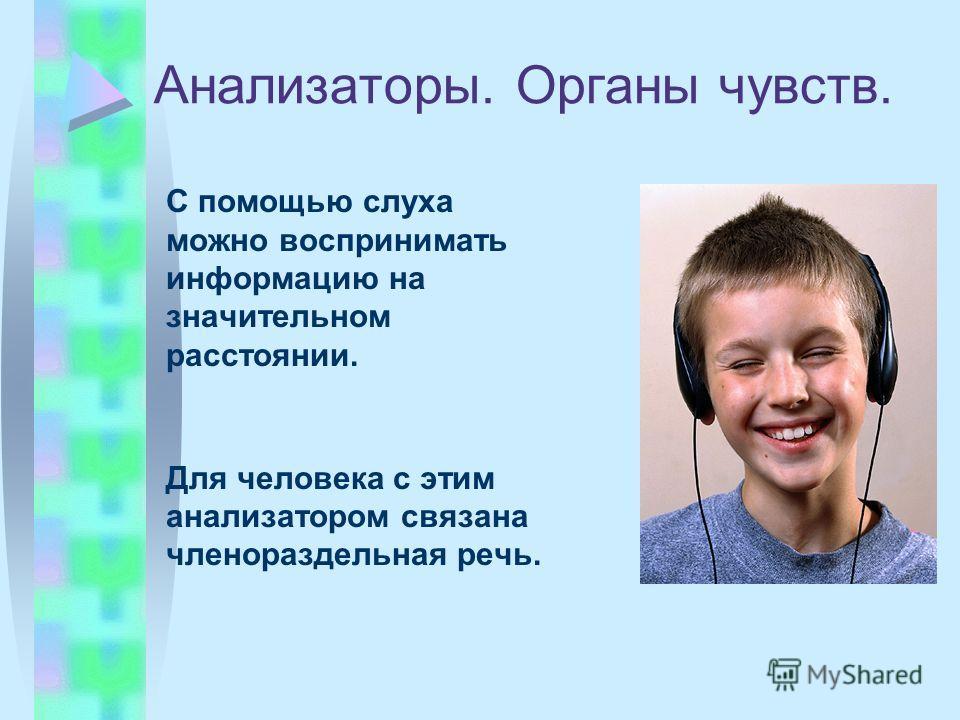 Анализаторы. Органы чувств. С помощью слуха можно воспринимать информацию на значительном расстоянии. Для человека с этим анализатором связана членораздельная речь.