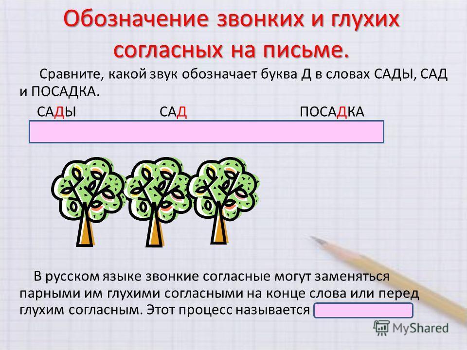 Обозначение звонких и глухих согласных на письме. Сравните, какой звук обозначает буква Д в словах САДЫ, САД и ПОСАДКА. САДЫСАДПОСАДКА [сады][сат][пасатка] В русском языке звонкие согласные могут заменяться парными им глухими согласными на конце слов
