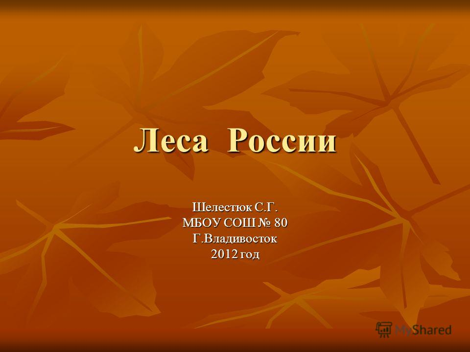 Леса России Шелестюк С.Г. МБОУ СОШ 80 Г.Владивосток 2012 год