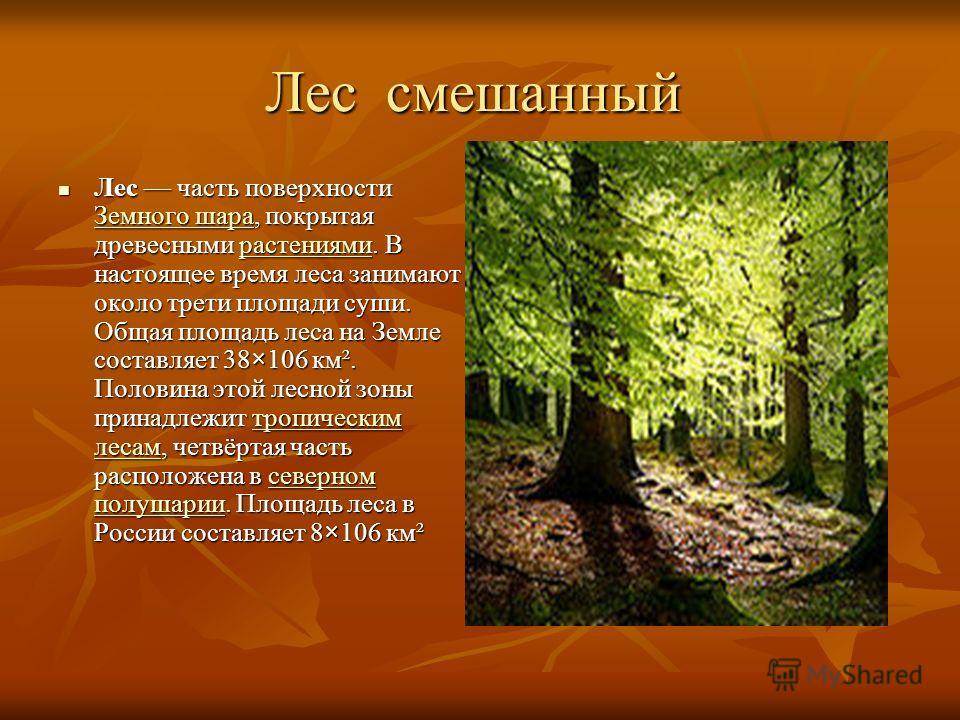 Лес смешанный Лес смешанный Лес часть поверхности Земного шара, покрытая древесными растениями. В настоящее время леса занимают около трети площади суши. Общая площадь леса на Земле составляет 38×106 км². Половина этой лесной зоны принадлежит тропиче