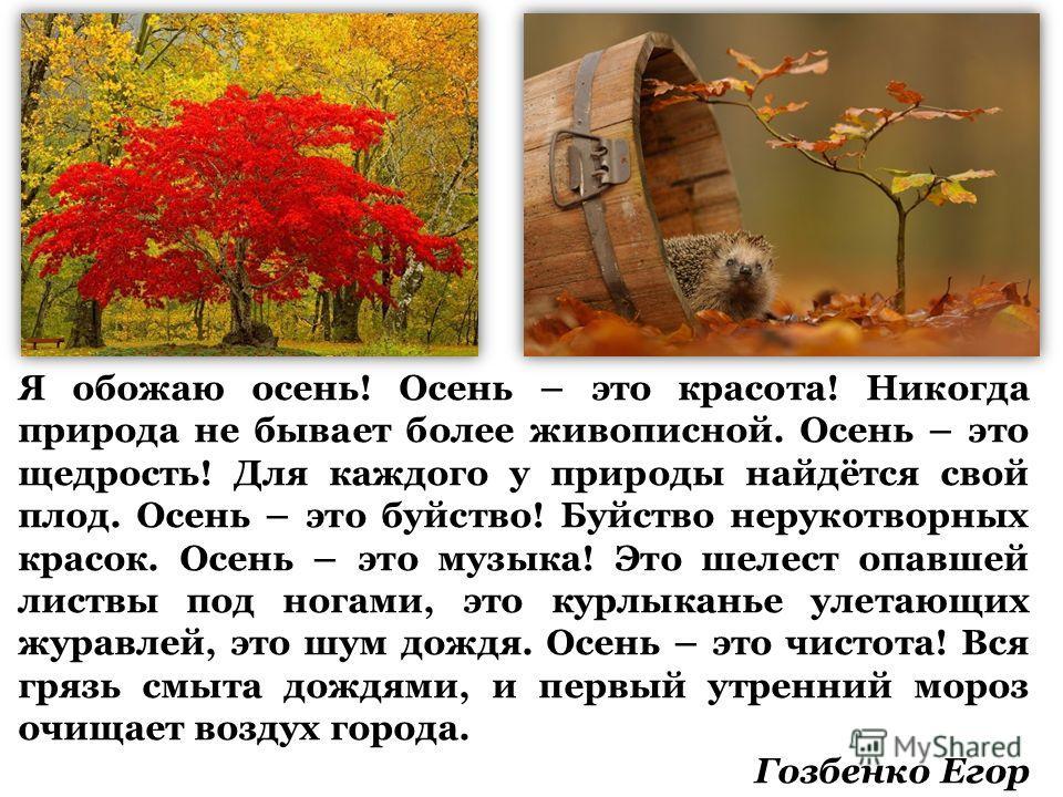 Я обожаю осень! Осень – это красота! Никогда природа не бывает более живописной. Осень – это щедрость! Для каждого у природы найдётся свой плод. Осень – это буйство! Буйство нерукотворных красок. Осень – это музыка! Это шелест опавшей листвы под нога