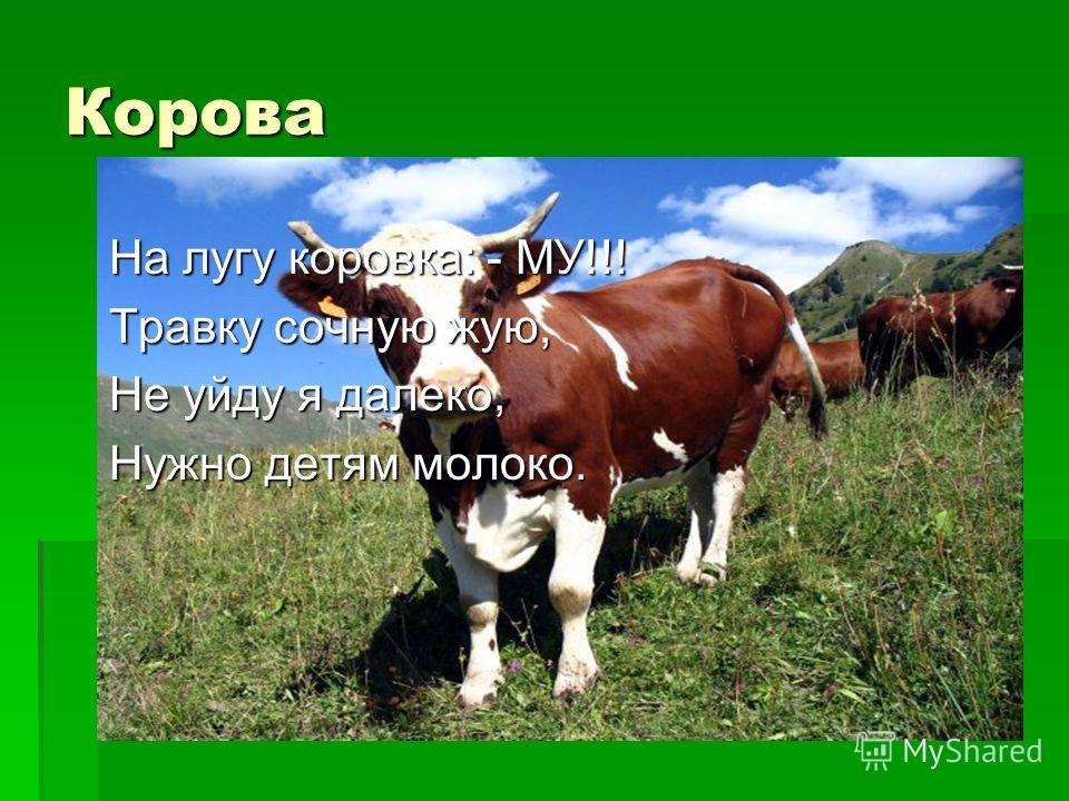 Корова На лугу коровка: - МУ!!! Травку сочную жую, Не уйду я далеко, Нужно детям молоко.