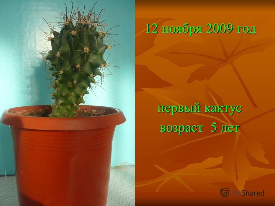 Цель эксперимента: Любители кактусов рекомендуют прививать эти цветы так, чтобы привой был величиной с бобовое зёрнышко. В этом случае наиболее вероятен положительный результат прирастания. Моя цель: проверить, смогут ли привиться кактусы с площадью