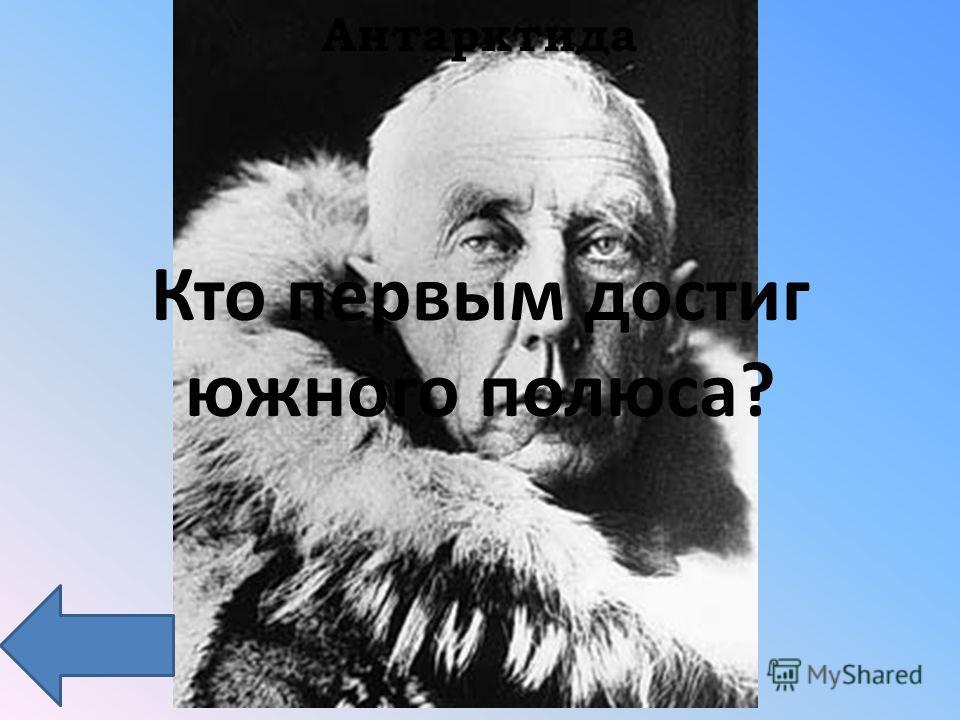 Антарктида Кто первым достиг южного полюса?