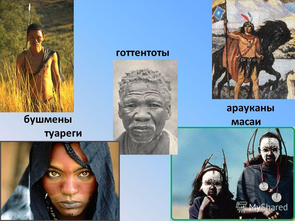 бушмены масаи туареги арауканы готтентоты