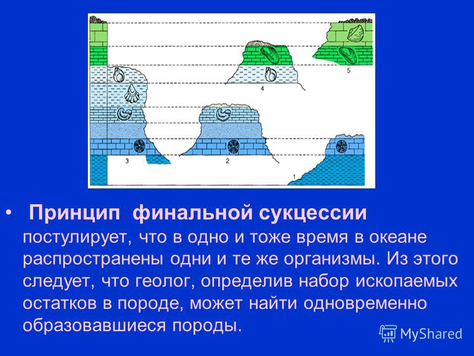 Принцип финальной сукцессии постулирует, что в одно и тоже время в океане распространены одни и те же организмы. Из этого следует, что геолог, определив набор ископаемых остатков в породе, может найти одновременно образовавшиеся породы.