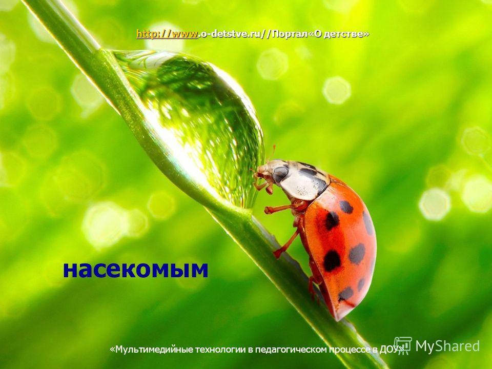 Мультимедийные технологии в педагогическом процессе в ДОУ насекомым http://wwwhttp://www.o-detstve.ru//Портал«О детстве» http://www «Мультимедийные технологии в педагогическом процессе в ДОУ»