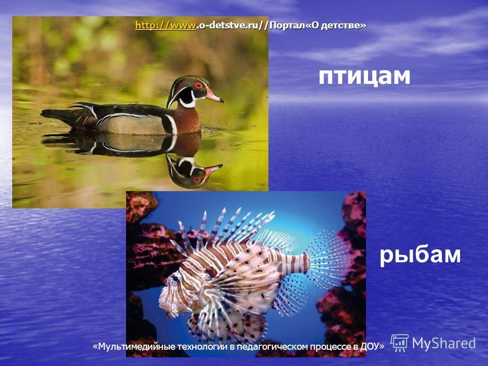 Мультимедийные технологии в педагогическом процессе в ДОУ птицам рыбам http://wwwhttp://www.o-detstve.ru//Портал«О детстве» http://www «Мультимедийные технологии в педагогическом процессе в ДОУ»
