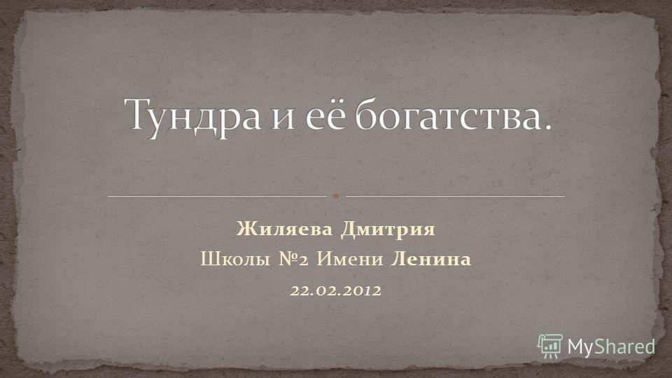 Жиляева Дмитрия Школы 2 Имени Ленина 22.02.2012