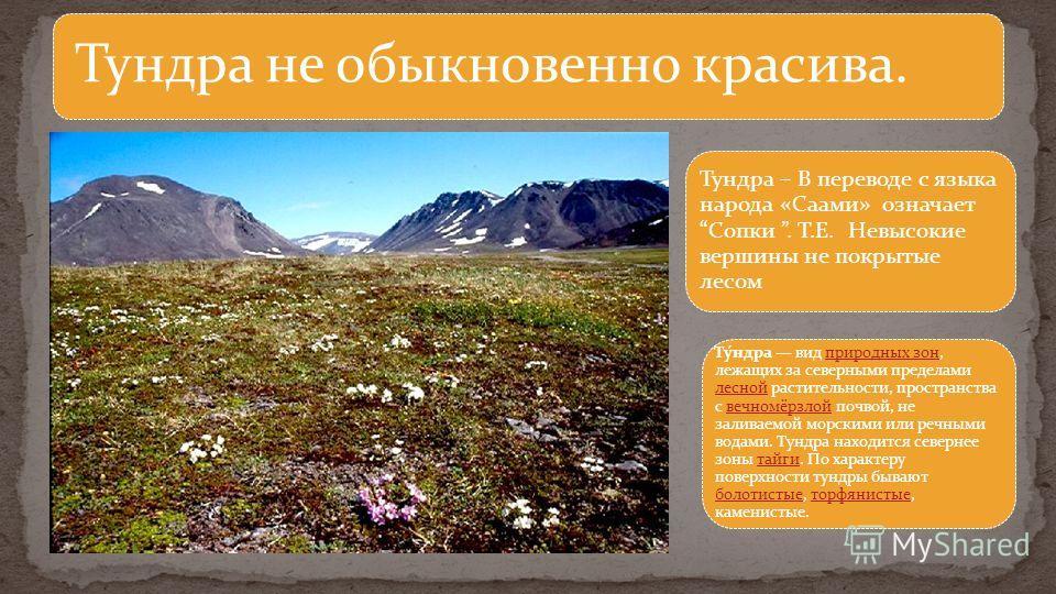 Тундра не обыкновенно красива. Тундра – В переводе с языка народа «Саами» означаетСопки. Т.Е. Невысокие вершины не покрытые лесом Ту́ндра вид природных зон, лежащих за северными пределами лесной растительности, пространства с вечномёрзлой почвой, не