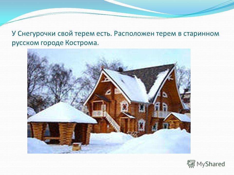 У Снегурочки свой терем есть. Расположен терем в старинном русском городе Кострома.