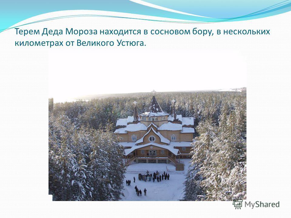 Терем Деда Мороза находится в сосновом бору, в нескольких километрах от Великого Устюга.
