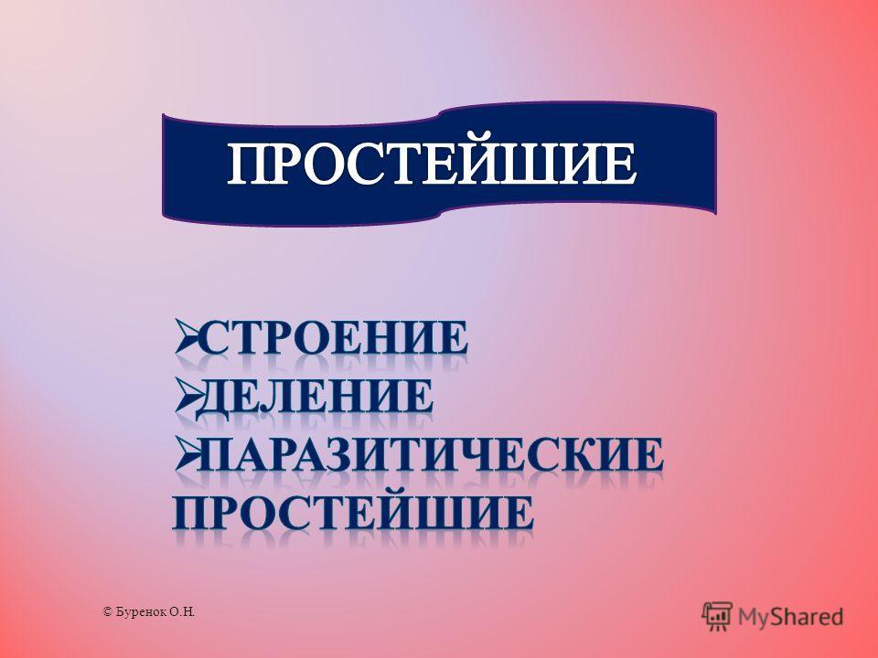 © Буренок О.Н.