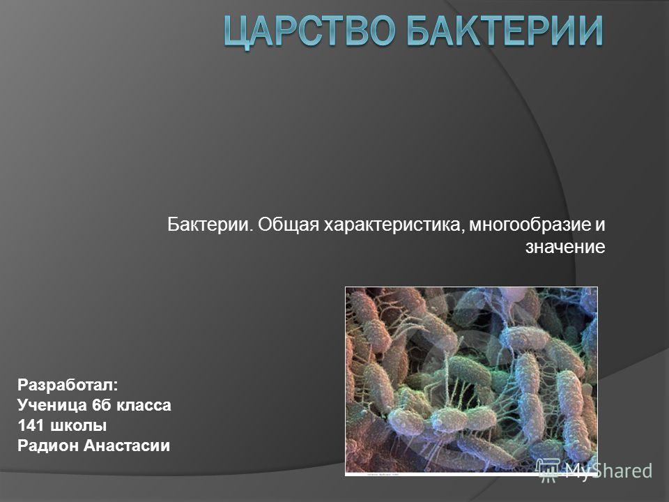 Бактерии. Общая характеристика, многообразие и значение Разработал: Ученица 6б класса 141 школы Радион Анастасии