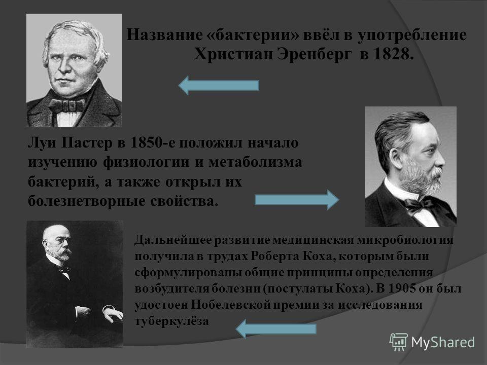 Название «бактерии» ввёл в употребление Христиан Эренберг в 1828. Луи Пастер в 1850-е положил начало изучению физиологии и метаболизма бактерий, а также открыл их болезнетворные свойства. Дальнейшее развитие медицинская микробиология получила в труда