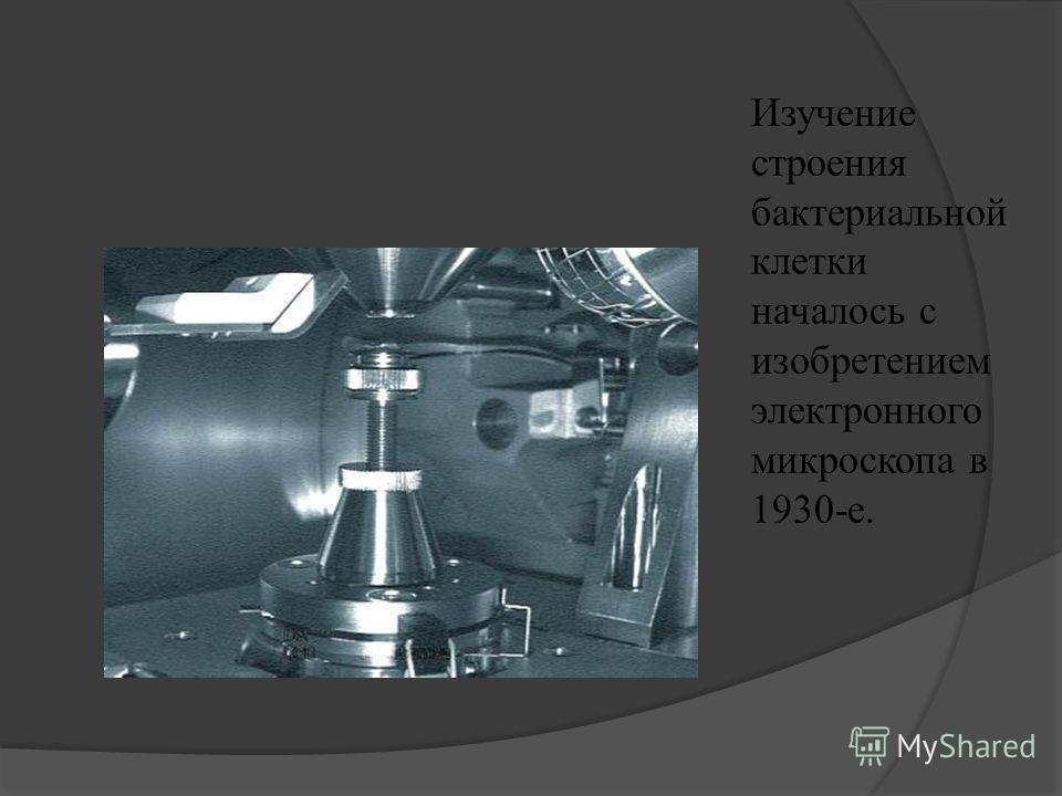 Изучение строения бактериальной клетки началось с изобретением электронного микроскопа в 1930-е.