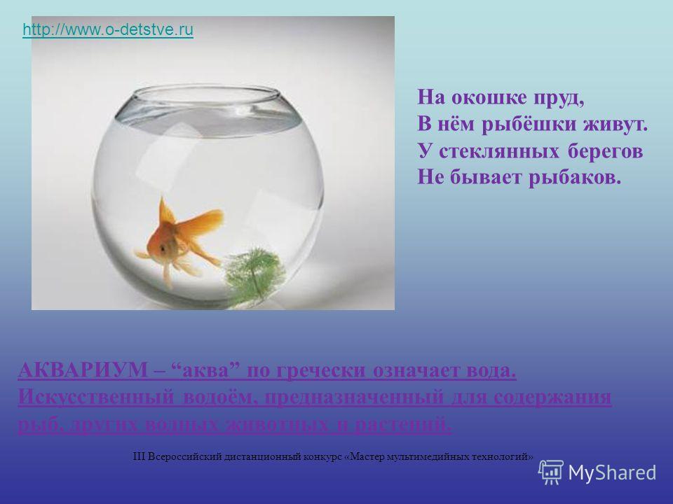 На окошке пруд, В нём рыбёшки живут. У стеклянных берегов Не бывает рыбаков. АКВАРИУМ – аква по гречески означает вода. Искусственный водоём, предназначенный для содержания рыб, других водных животных и растений. http://www.o-detstve.ru III Всероссий