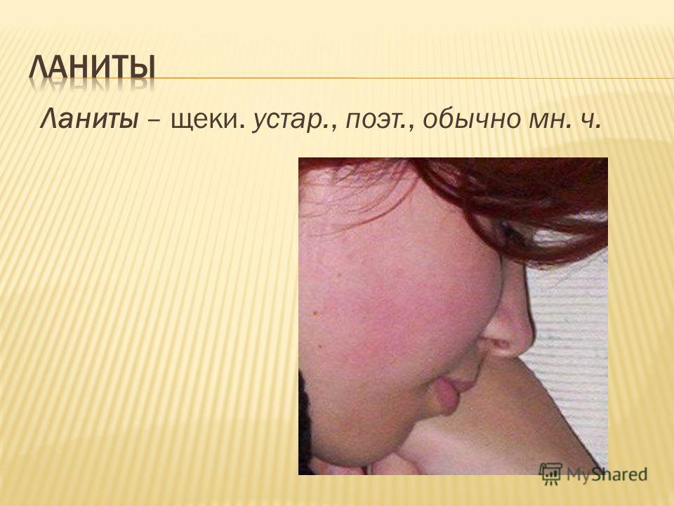 Ланиты – щеки. устар., поэт., обычно мн. ч.