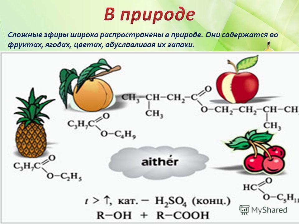 Сложные эфиры широко распространены в природе. Они содержатся во фруктах, ягодах, цветах, обуславливая их запахи.