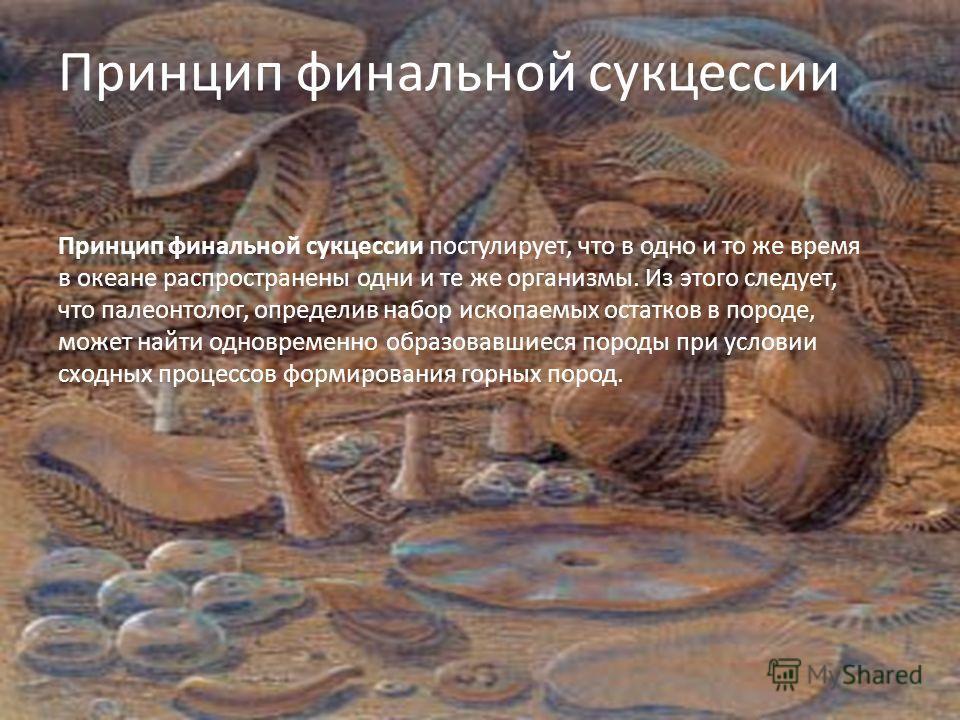 Принцип финальной сукцессии Принцип финальной сукцессии постулирует, что в одно и то же время в океане распространены одни и те же организмы. Из этого следует, что палеонтолог, определив набор ископаемых остатков в породе, может найти одновременно об