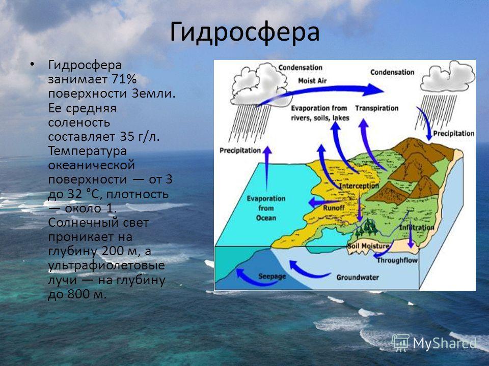 Гидросфера Гидросфера занимает 71% поверхности Земли. Ее средняя соленость составляет 35 г/л. Температура океанической поверхности от 3 до 32 °С, плотность около 1. Солнечный свет проникает на глубину 200 м, а ультрафиолетовые лучи на глубину до 800