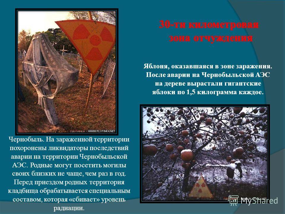 Чернобыль. На зараженной территории похоронены ликвидаторы последствий аварии на территории Чернобыльской АЭС. Родные могут посетить могилы своих близких не чаще, чем раз в год. Перед приездом родных территория кладбища обрабатывается специальным сос