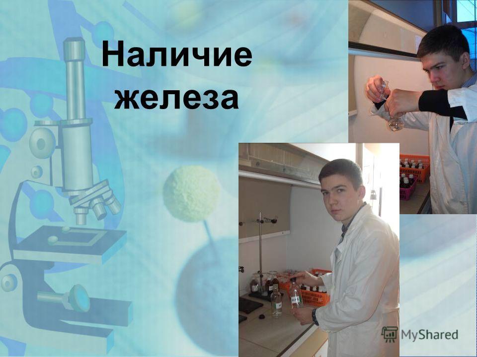 www.themegallery.com Наличие железа
