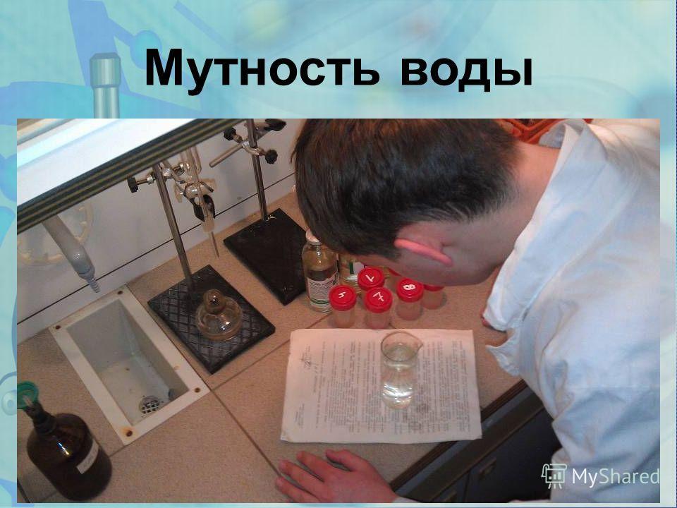 www.themegallery.com Мутность воды